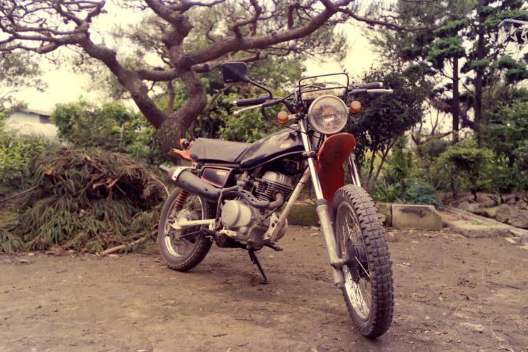 1986050504