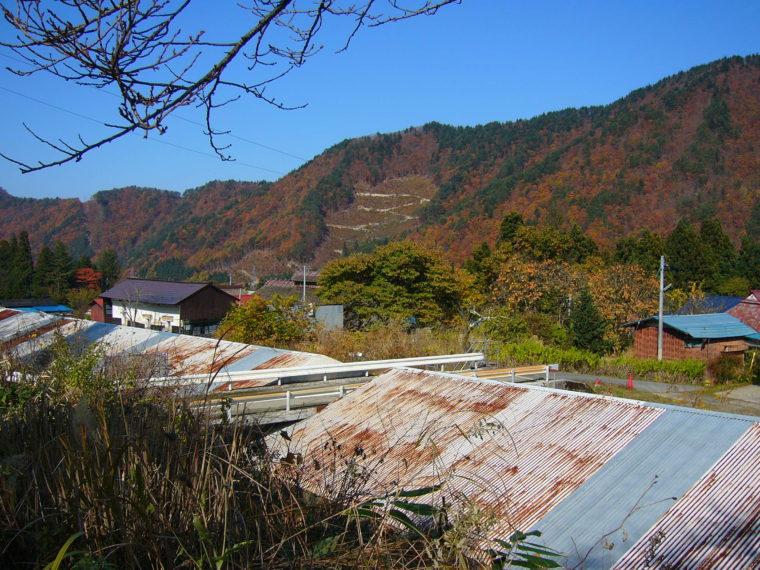 2009110706.jpg