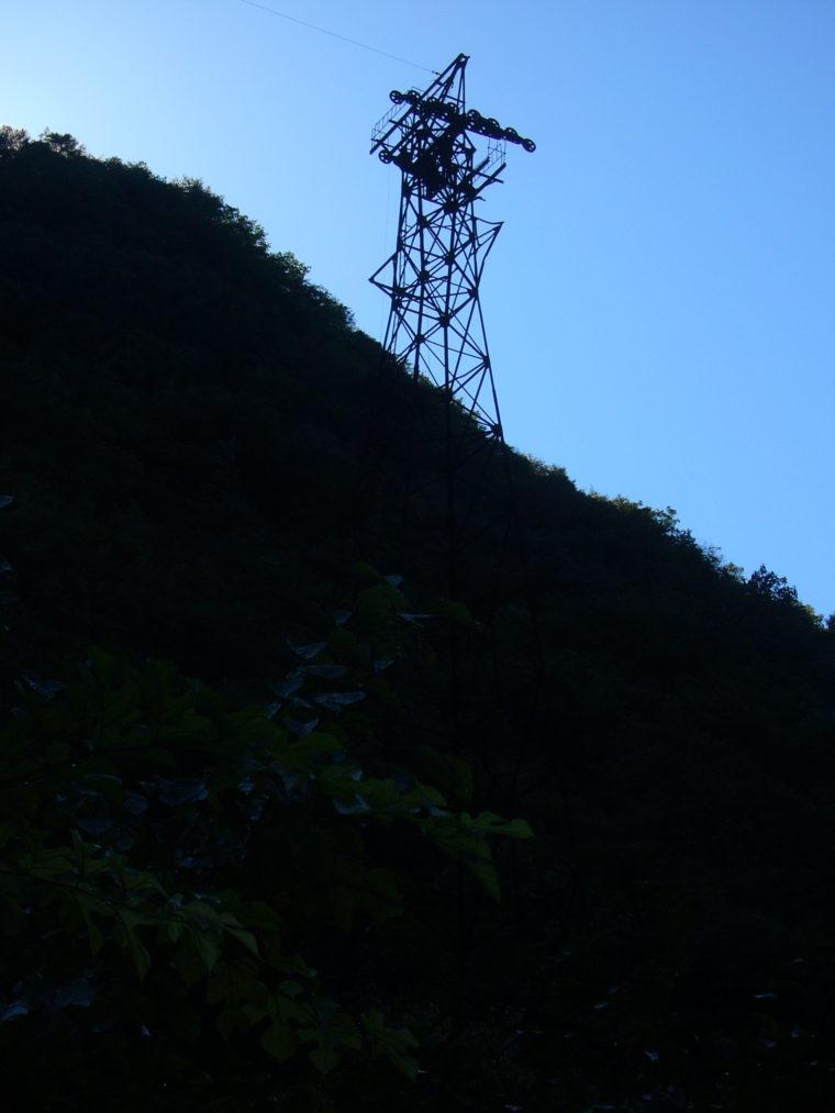 2010101108.jpg